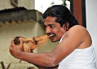 Gautam Varma photo, Gautam Varma Peeling Coconut by Teeth picture, Pilling Coconut by Teeth World Record video, Gautam Varma image, Pilling Coconut by Teeth Karnataka India, Peeling Coconut by Teeth Guinness Book of Records