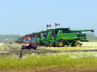 combine harvesters world record picture, combine harvesting Guinness world record photo, Most Harvesters Working on the Same Field southern Manitoba