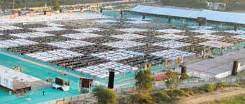 World's Largest chess Tournament in Ahmedabad, chess tournament Ahmadabad,Most Number of People Playing Chess Game World Records 2011, chess Tournament in GMDC ground Ahmedabad gujarat, Biggest Chess Game video, largest number of players playing chess game